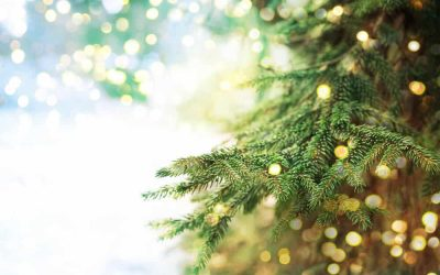 "Top 5 Ways to ""Green"" Your Christmas"