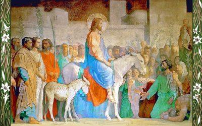 Homilía de Domingo de Ramos