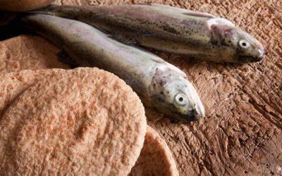 Eucaristía: alimento, sacrificio y don